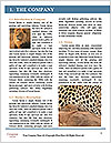 0000071552 Word Template - Page 3