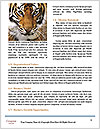 0000071552 Word Templates - Page 4