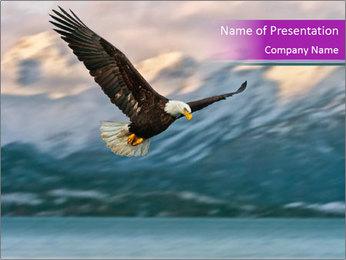 0000071554 PowerPoint Templates - Slide 1