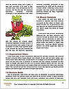 0000071555 Word Template - Page 4