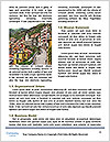 0000071557 Word Template - Page 4
