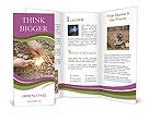 0000071558 Brochure Template