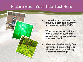 0000071558 PowerPoint Template - Slide 17