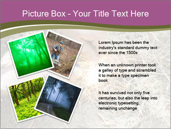 0000071558 PowerPoint Template - Slide 23