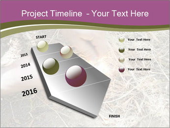 0000071558 PowerPoint Template - Slide 26