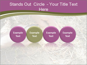 0000071558 PowerPoint Template - Slide 76