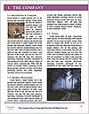 0000071558 Word Template - Page 3