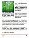 0000071558 Word Template - Page 4