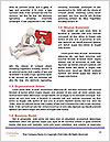 0000071561 Word Template - Page 4