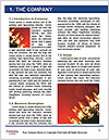 0000071562 Word Template - Page 3