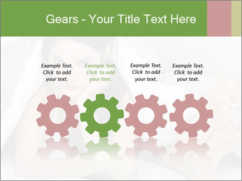 0000071565 PowerPoint Templates - Slide 48