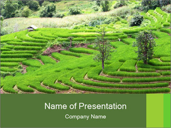 0000071569 PowerPoint Template - Slide 1