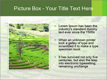 0000071569 PowerPoint Template - Slide 13