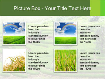 0000071569 PowerPoint Template - Slide 14