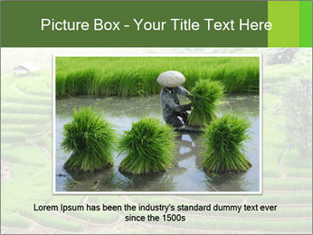 0000071569 PowerPoint Template - Slide 16