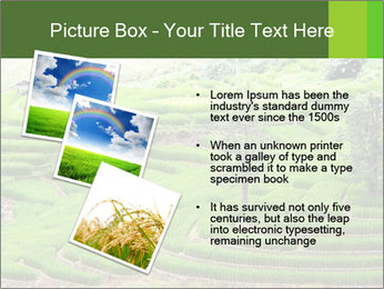 0000071569 PowerPoint Template - Slide 17