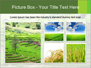0000071569 PowerPoint Template - Slide 19