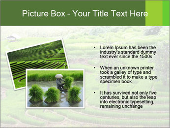 0000071569 PowerPoint Template - Slide 20