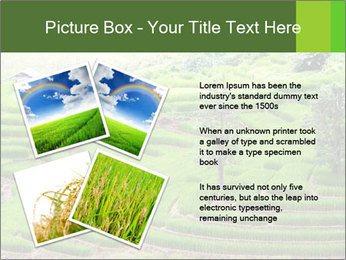 0000071569 PowerPoint Template - Slide 23