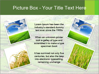 0000071569 PowerPoint Template - Slide 24