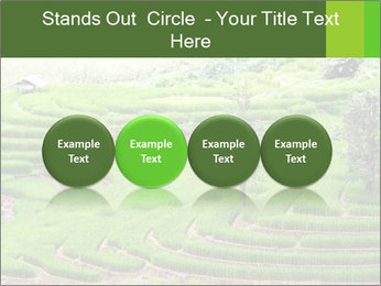 0000071569 PowerPoint Template - Slide 76