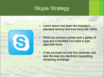 0000071569 PowerPoint Template - Slide 8