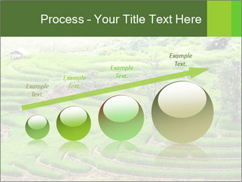 0000071569 PowerPoint Template - Slide 87