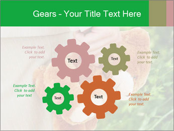 0000071577 PowerPoint Templates - Slide 47