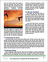 0000071578 Word Template - Page 4