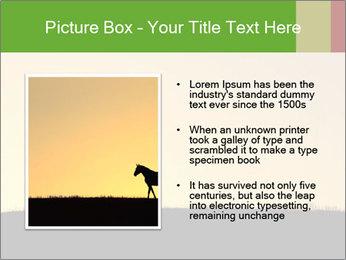 0000071579 PowerPoint Template - Slide 13