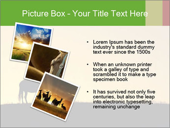 0000071579 PowerPoint Template - Slide 17