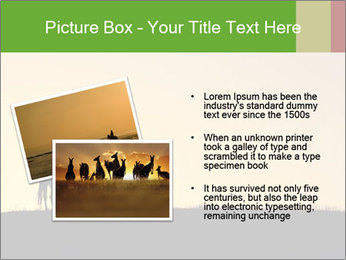 0000071579 PowerPoint Template - Slide 20