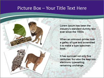 0000071587 PowerPoint Template - Slide 23