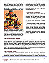 0000071590 Word Template - Page 4
