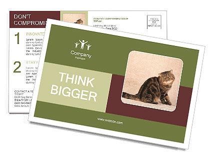 0000071593 Postcard Templates