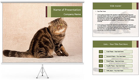 0000071593 PowerPoint Template