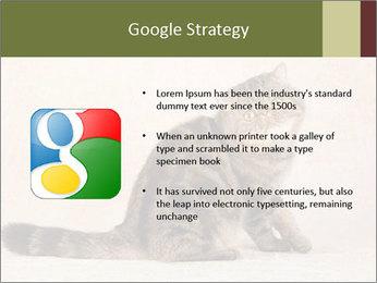 0000071593 PowerPoint Templates - Slide 10