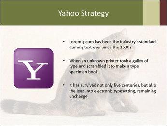 0000071593 PowerPoint Templates - Slide 11