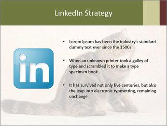 0000071593 PowerPoint Templates - Slide 12
