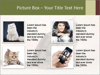 0000071593 PowerPoint Template - Slide 14