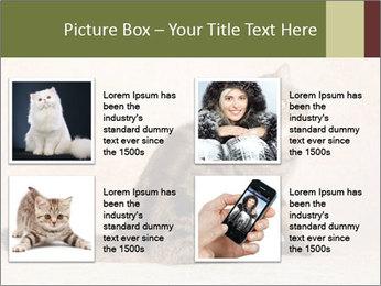 0000071593 PowerPoint Templates - Slide 14