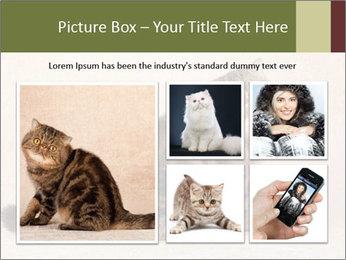 0000071593 PowerPoint Templates - Slide 19