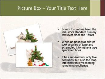 0000071593 PowerPoint Templates - Slide 20