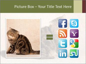 0000071593 PowerPoint Templates - Slide 21