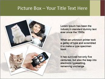 0000071593 PowerPoint Templates - Slide 23