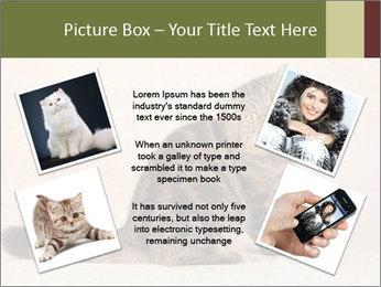 0000071593 PowerPoint Templates - Slide 24