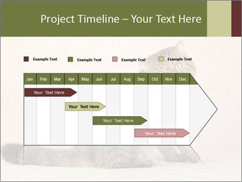 0000071593 PowerPoint Templates - Slide 25