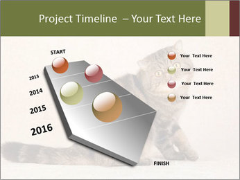 0000071593 PowerPoint Template - Slide 26