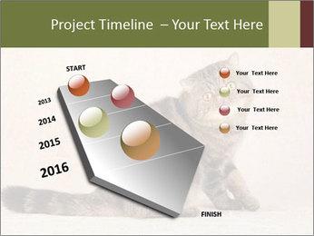 0000071593 PowerPoint Templates - Slide 26