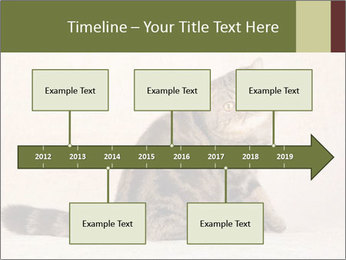 0000071593 PowerPoint Templates - Slide 28